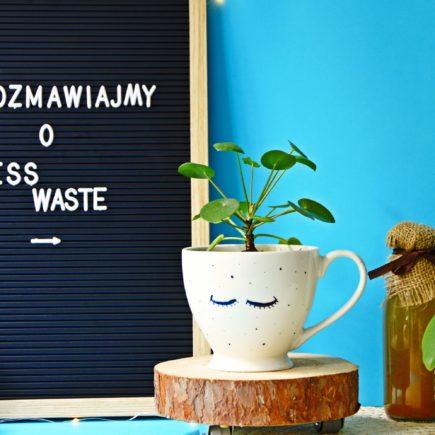 Less waste - miniaturka